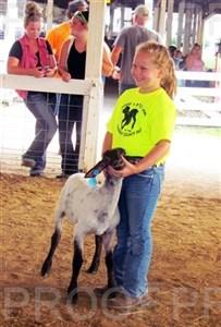 Woodbury Co. Fair 2016 -- Bucket Lamb Show