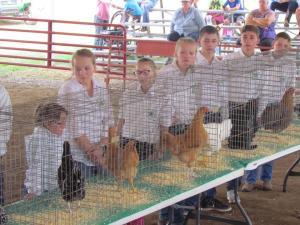 Woodbury Co. Fair 2017 -- Poultry Show & Bottle Goat Show