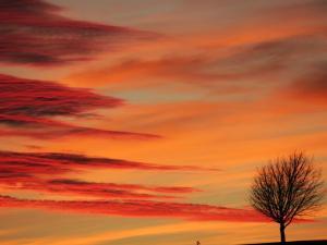 Sunset Photos from Pam Clark -- February 2, 2020