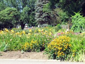 Curbside flowers