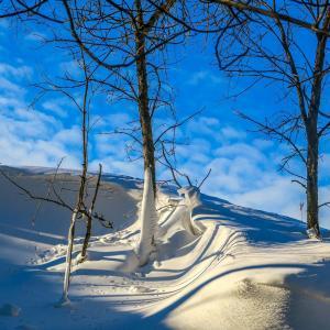 Original snow photo